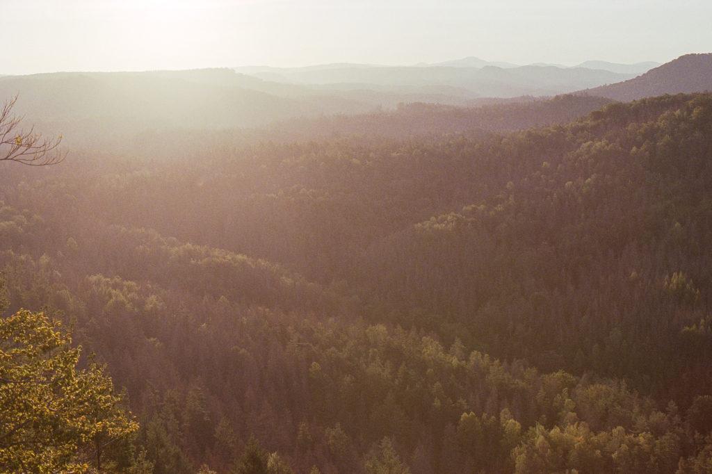 Fujifilm Venus 800, Nikon FM2, elbsandsteingebirge, sonnenaufgang