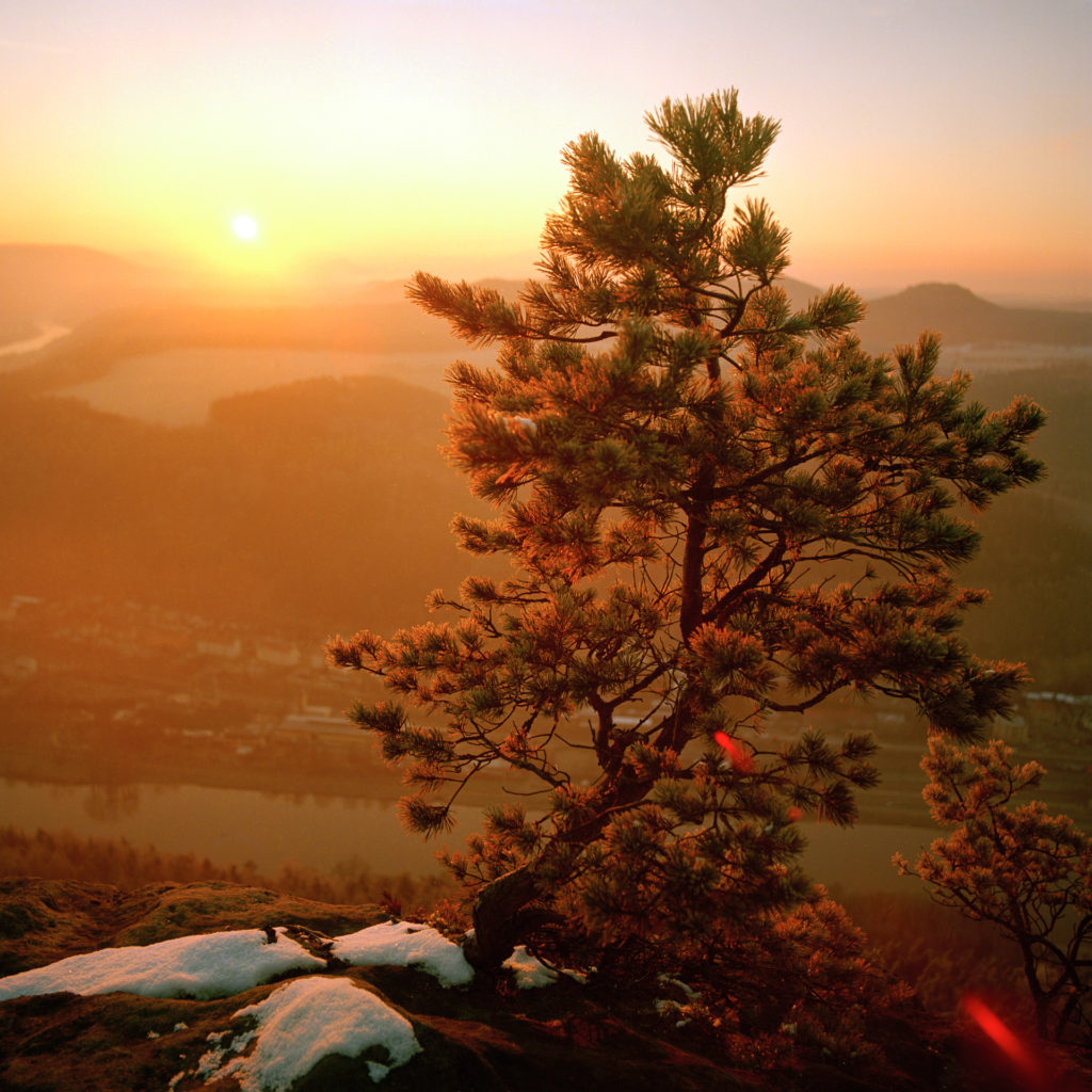 Kodak Ektar 100, Mittelformat, Sonnenaufgang, Elbsandsteingebirge